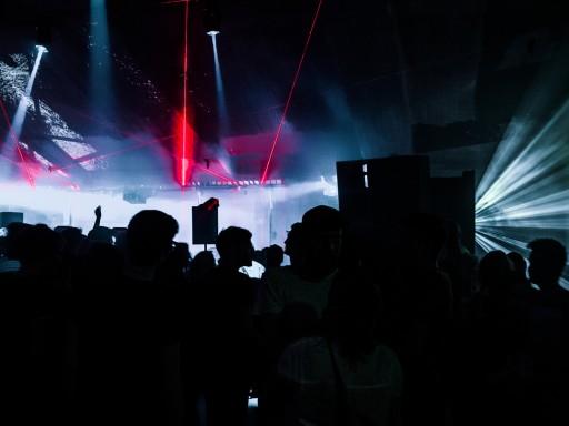 Fiber festival 2015